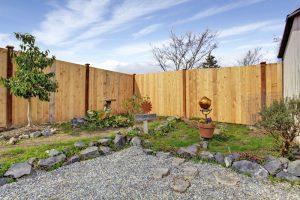 Rocks or Organic Mulch