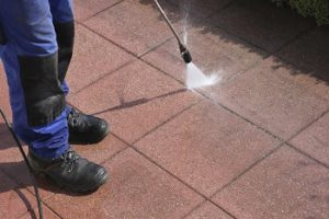 Are Power Washers Safe to Use on Trees?